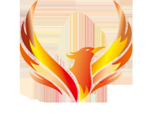Công ty TNHH đầu tư thương mại dịch vụ Phượng Hoàng